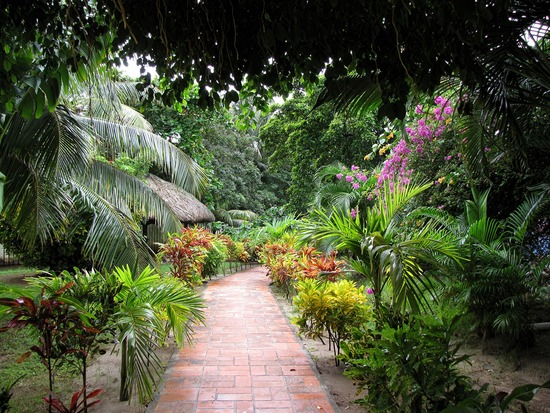 WALKWAYS And GARDEN PATHS: ...